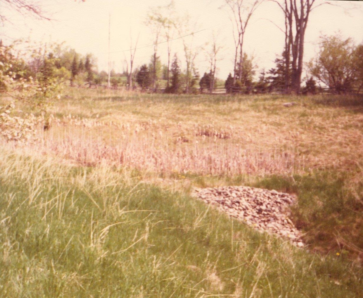 198005xx-ra-016-Marsh-Randboro