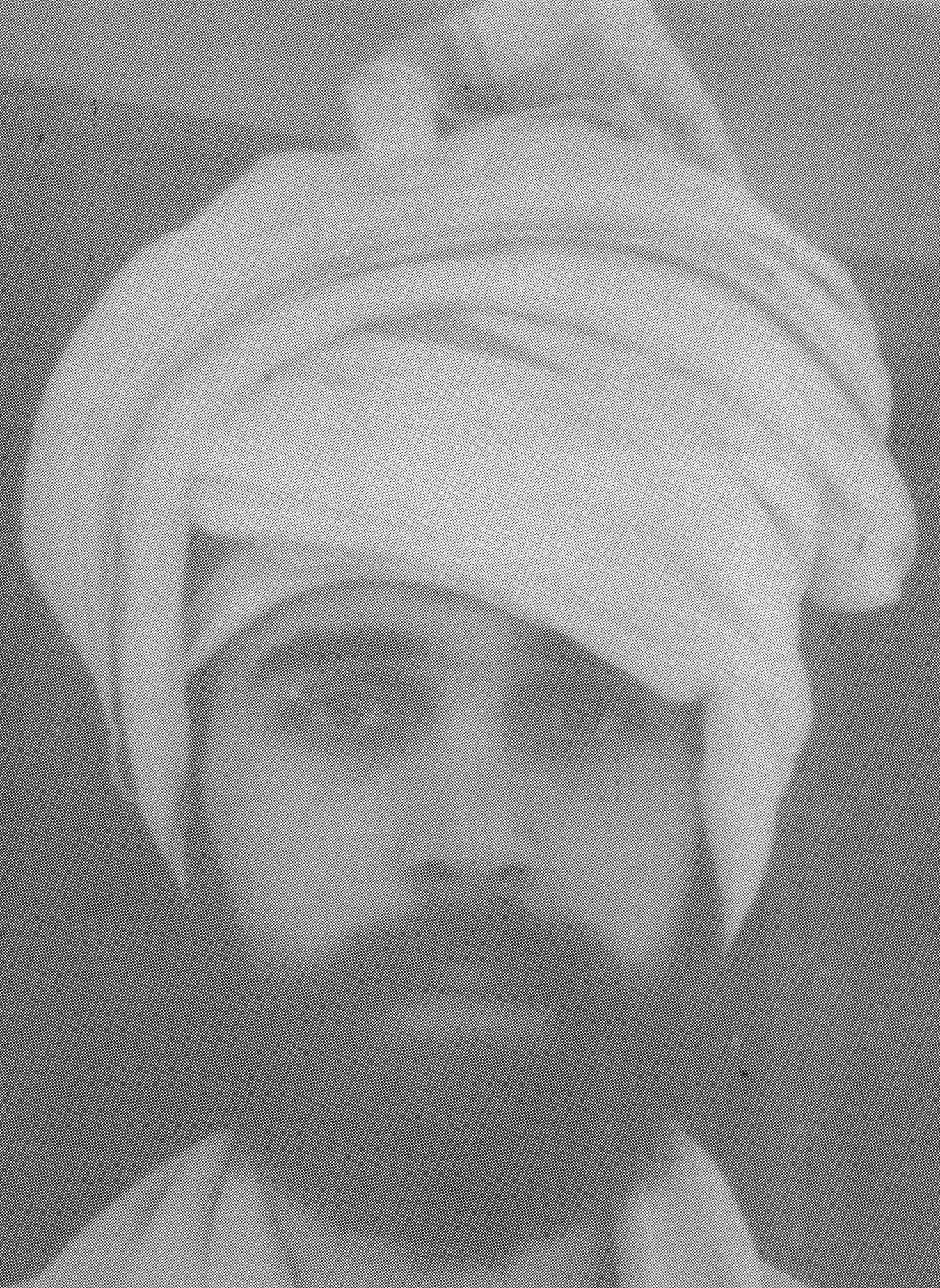 1969-0723-xx-073a-Robin-Kumbakonam-India-after-13-months-alone