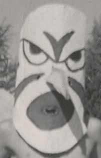 1958 Robin Hand Made Mask-062