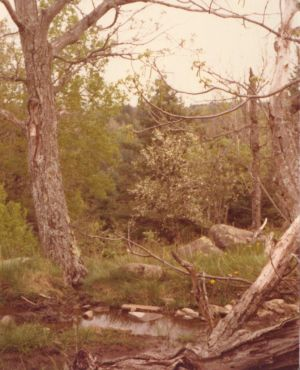 198005xx-ra-009-around Barn-Randboro