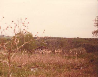 198005xx-ra-019-barn-Randboro
